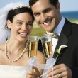 Stock Photo: Bride and groom toasting.