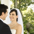 Happy Newlywed Couple - Stock Photo