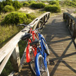 Bicycles at beach. - Photo