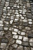 Stone inlayed street. — Stock Photo