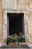 Window exterior. — Stock Photo