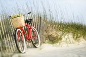 Bicyclette avec fleurs. — Photo