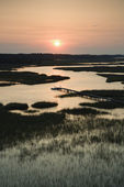 Marsh with pier. — Stock Photo