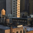 Rooftop Water Towers on NYC Buildings - ストック写真