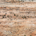 Zion National Park. — Stock Photo