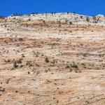 Zion National Park, Utah. — Stock Photo