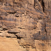 Red rock wall in Utah. — Stock Photo