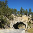 Road tunnel through rock. — Stock Photo #9511399