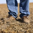 Farmer workboots. — Stock Photo #9513352