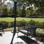 Empty bench in urban park. — Stock Photo
