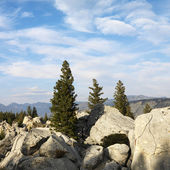 Wyoming mountain landscape. — Stock Photo