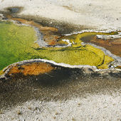 Geyser basin in Yellowstone. — Stock Photo