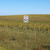 Rural speed limit sign. — Stock Photo