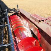 Combine harvesting soybeans. — Stock Photo