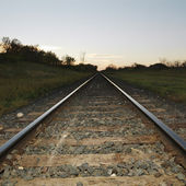 Railroad tracks. — Stock Photo