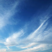 Cirrus clouds in sky. — Stock Photo