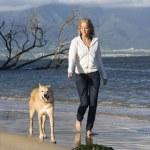 Woman walking dog. — Stock Photo