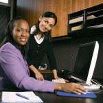 Businesswomen working in office. — Stock Photo