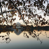 Jefferson Memorial Washington, DC. — Stock Photo
