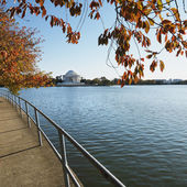 Jefferson Memorial in Washington, D.C., USA. — Stock Photo