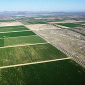 Farmland aerial. — Stock Photo