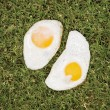 Two fried eggs on grass. - Stock Photo