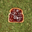 Stock Photo: Slice of toast with jam.