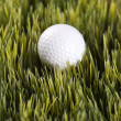 Golfball resting in grass. — Stock Photo