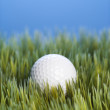 Stock Photo: Golfball resting in grass.