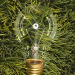 Glass light bulb on grass. - Stock Photo