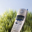 Cordless telephone in grass. — Stock Photo