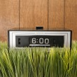 Retro clock in grass. — Stok fotoğraf