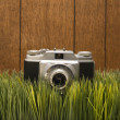 Vintage camera on grass — Stockfoto