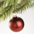 Christmas ornament. — Stockfoto