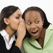Women gossiping. — Stock Photo