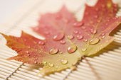 Maple leaf on bamboo mat. — Stock Photo