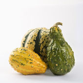 Three gourds — Stock Photo