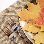 Fall place setting. — Stock Photo