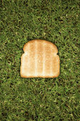 Slice of toast on grass — Stock Photo
