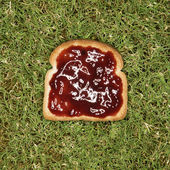 Slice of toast with jam. — Stock Photo