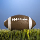 Football resting in grass. — Stock Photo