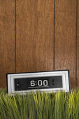 Retro clock in grass. — Stock Photo