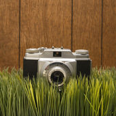 Vintage camera on grass — Stock Photo