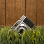 Vintage camera in grass. — Stock Photo
