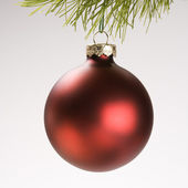 Christmas ornament from branch. — Stock Photo