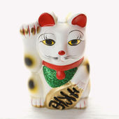 Japanese lucky cat. — Stock Photo