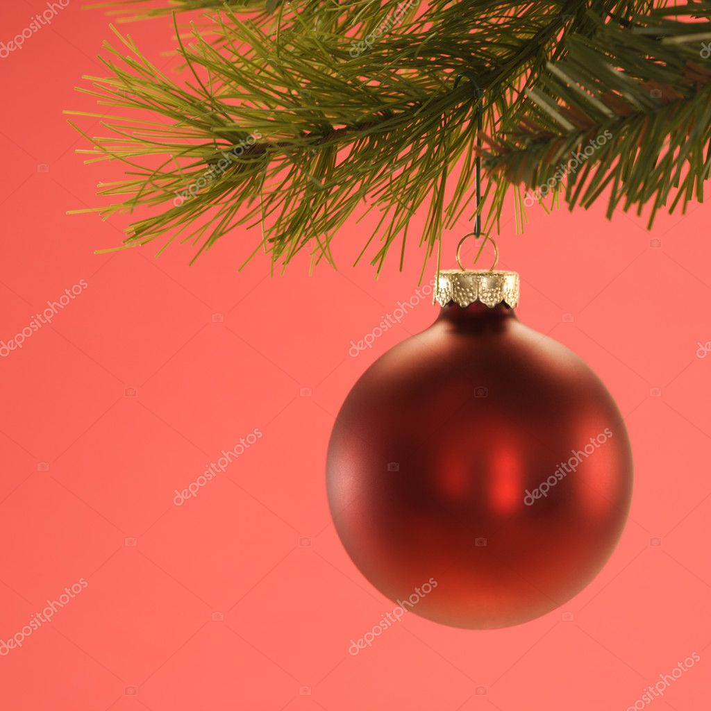 Still life of red Christmas ornament hanging from pine branch. — Stock Photo #9531196