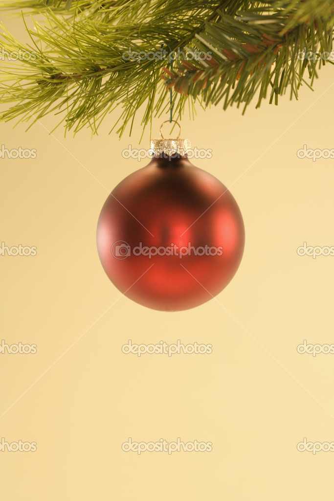 Still life of red Christmas ornament hanging from pine branch. — Stock Photo #9531204