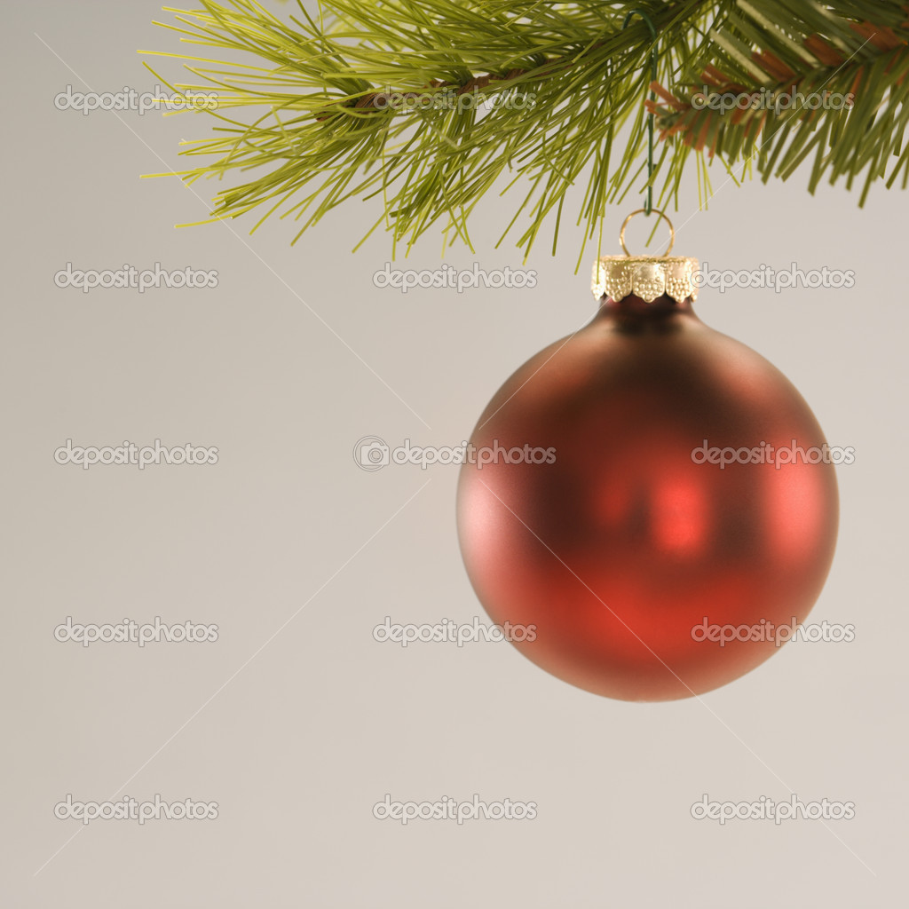 Still life of red Christmas ornament hanging from pine branch. — Stock Photo #9531209