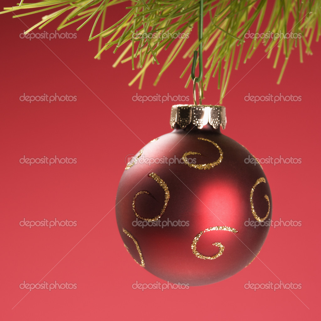 Still life of red Christmas ornament hanging from pine branch.  Stock Photo #9531217